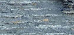 Ondas de corriente en un sedimento arcilloso del intermareal plana interior (Carbonífero de Kentucky).